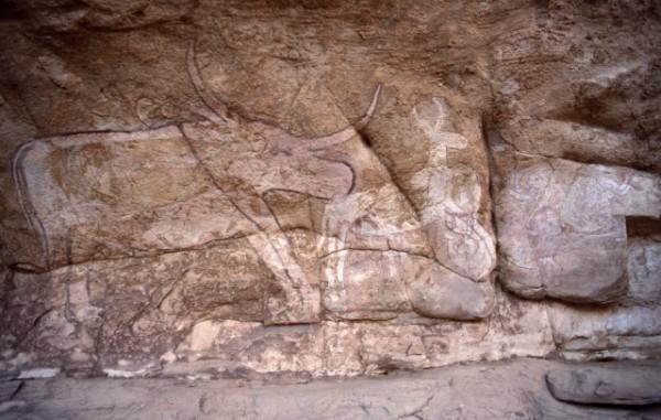 Site de Sefar (Tassili N'Ajjer, Algérie) / Peinture rupestre / Vache / 46N-P58-001