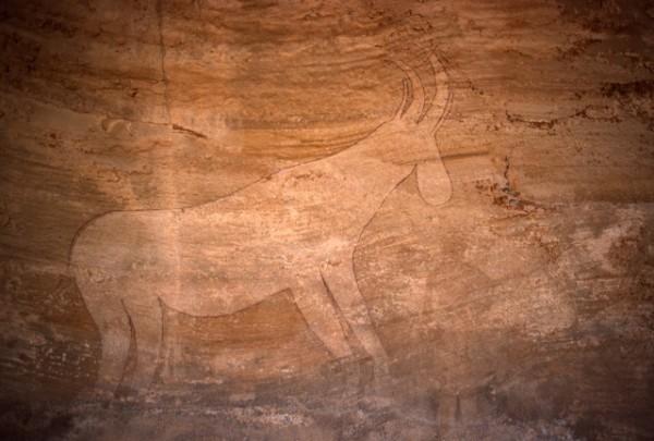 Site de Sefar (Tassili N'Ajjer, Algérie) / Peinture rupestre / Antilope / 46N-P61-007