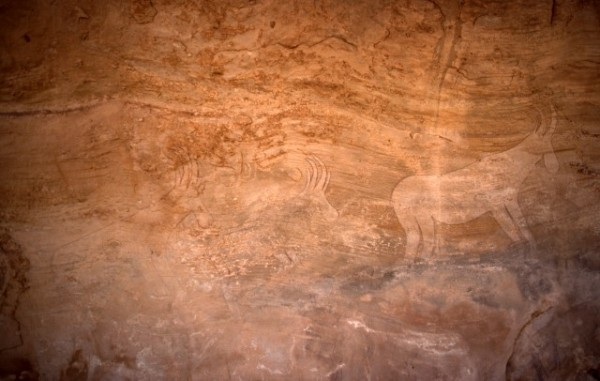 Site de Sefar (Tassili N'Ajjer, Algérie) / Peinture rupestre / Antilopes / 46N-P62-003