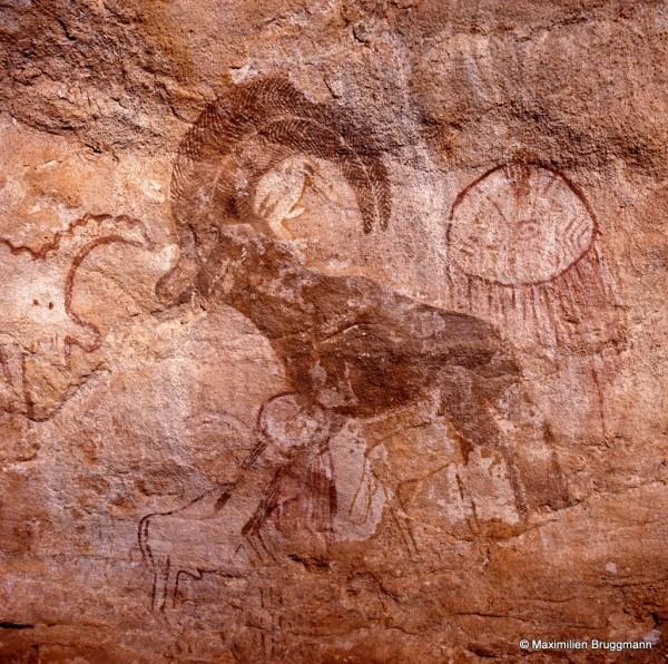 538 Tan-Zoumaïtak (Tassili-n'Ajjer). — Splendide mouflon aux cornes typiques et minutieusement ornées au pinceau fin. Epoque des « têtes rondes » évoquant Séfar. A droite, une figure évoquant une méduse. En bas, petits bovidiens dont l'un présente un disque blanc. A gauche, un animal non identifiable, du style de Séfar, à contour rouge et corps blanc. Le mou¬flon lui-même est peint en brun foncé. Cette photo, comme la précédente, sont des détails du très beau panneau déjà vu avec la photo 4 dans l'introduction.