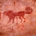 550 Tin-Aboteka (Tassili-n'Ajjer). — Bête indéter¬minée, peut-être un chien. La queue est hautement fantaisiste. Une denticulation de l'ensemble du contour correspond aux poils de l'animal probable¬ment récent et dont l'âge doit être donné par les caractères tifinars. Peinture à l'ocre rouge.