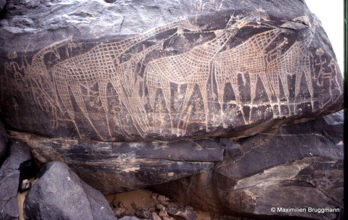 38 Tagueït haut (Aïr). — Cette fresque de girafes, remarquable par le travail de piquetage et de gravure au trait qu'elle a nécessité, ne date pas de la même époque que les deux personnages, dont un archer, précédant le troupeau, qui semblent bien plus récents. Les principaux animaux mesurent de 0,60 m à 0,80 m. Le rocher lui-même mesure 2,40 m de long.