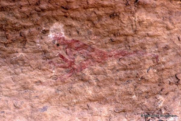 461 Ozeneare (Tassili-n'Ajjer). — Guerrier ou chas¬seur galopant vers la gauche. La coiffure est peinte en blanc. On distingue les flèches et il tient un arc à la main. Largeur du panneau : 0,21 m.