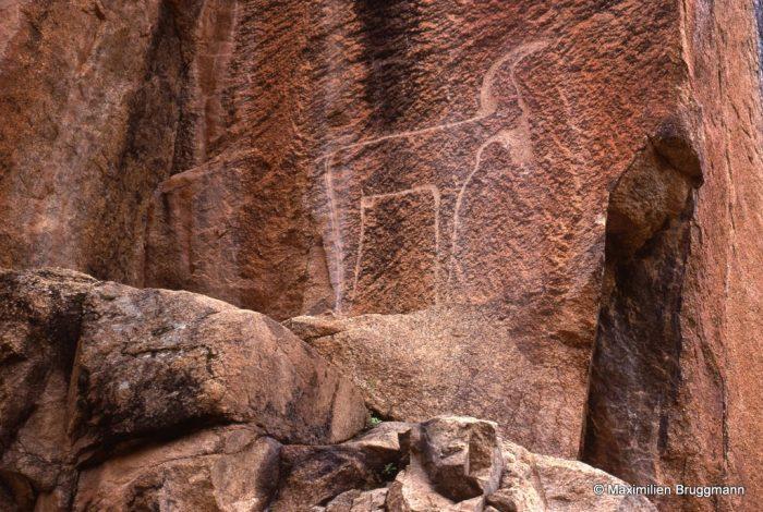266 Tazka-Tafraout (Maroc). — Ongulé (bélier ?) très schématiquement gravé. Le sexe est néanmoins représenté. De l'extrémité de la corne au sabot avant droit : 1,54 m.
