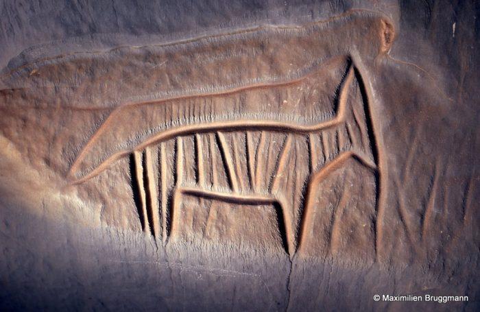 269 Icht (Maroc). — Curieuse gravure d'identification difficile. Un ongulé est surmonté par une autre gravure partant de la queue et aboutissant au museau. De la queue au museau : 0,30 m.