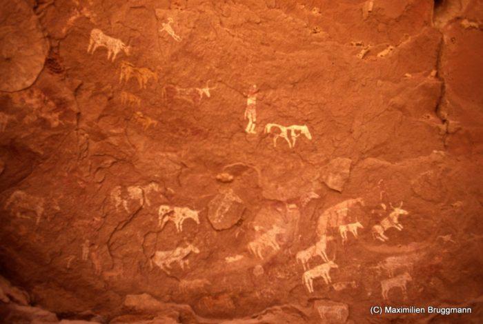119 Enneri Blaka. Site 10. — Epoque pastorale (?). Cette fresque orne le plafond de l'abri sous roche du site 10. Il s'agit essentiellement de bovidés et de personnages. Deux d'entre eux sont à cheval sur un boeuf. Largeur de la portion de plafond représentée : 2,05 m.