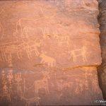 86 Enneri Domo, site d'Arkana. — Epoque des chars. Autruche, boeufs, girafe ; tifinars, ovins ou caprins. Sur le char dont les roues à quatre rayons sont rendues en « à-plat », le timon central se termine par une petite barre transversale. Le plancher se réduit à un triangle plat. Le rocher support a une hauteur de 1,77 m.