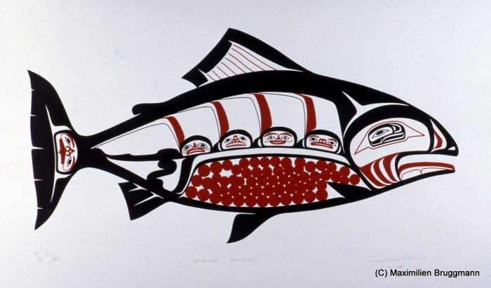 Chinook salmon with eggs before spawning. Silk-screen by the Tsimshian artist Roy Vickers.