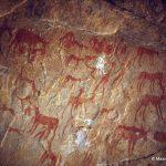 289 El Beridj (Tadrart). — Retour au type d'homme « diabolo ». Cette fresque, peinte à l'ocre rouge et à la peinture blanche, se situe dans un abri profond au plafond bas. On y voit des personnages, un cavalier, des chiens, des chèvres... Un personnage peint en blanc (le « Kokopelli » selon les ethnographes des Indiens) jouant de la flûte. Il mesure 0,15 m de hauteur.